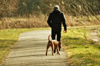 Walking dog to reduce anger